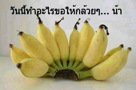 วันนี้จะทำอะไรก็ขอให้กล้วยๆ นะครับ!